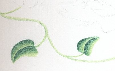 Papier calligraphie