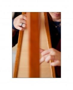 harpe celtique philippe volant